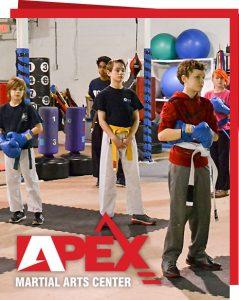 apex martial arts center