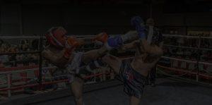 kickboxing apex
